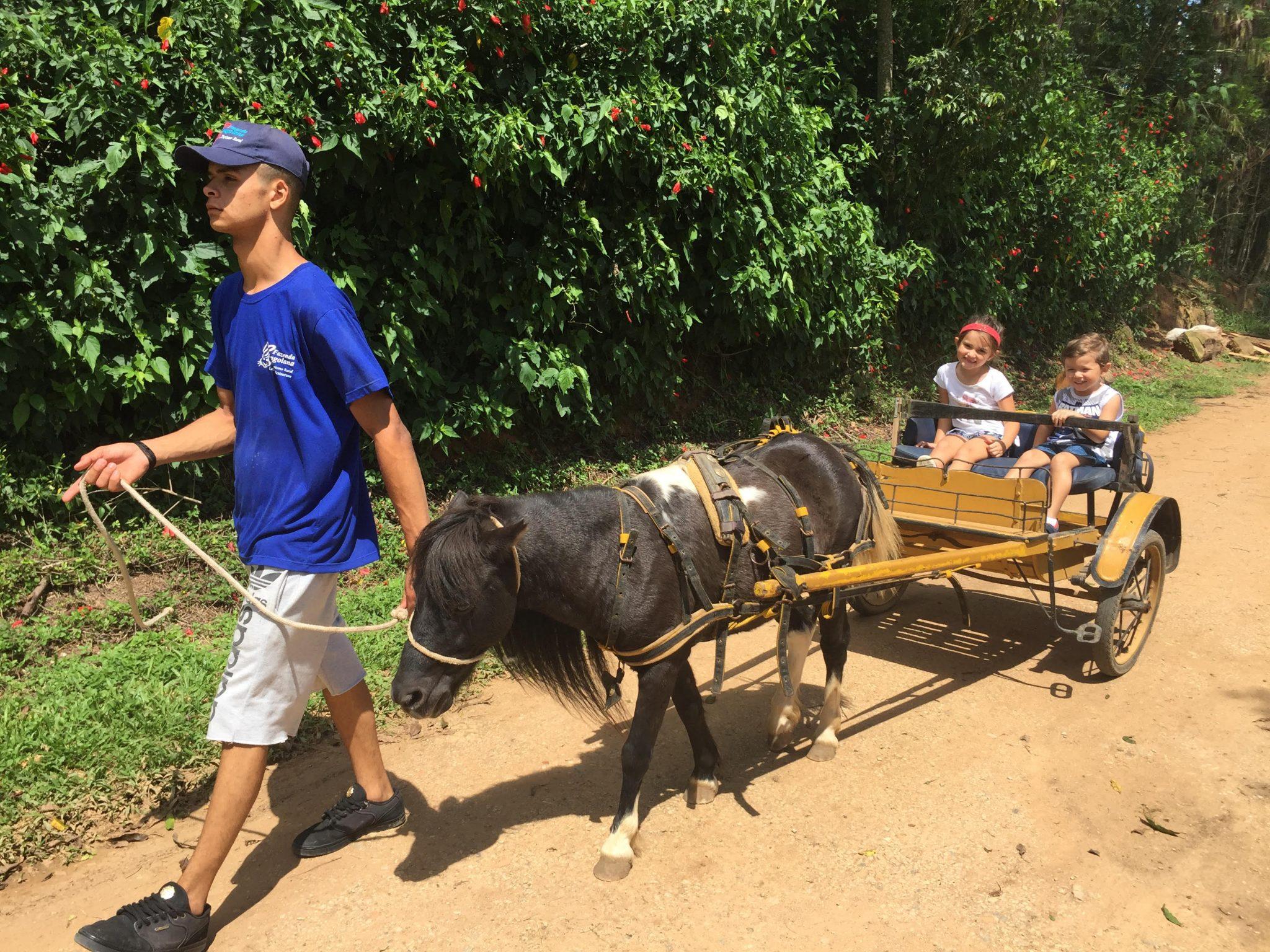 Fazenda Angolana oferece mais do que vivência rural para criançada