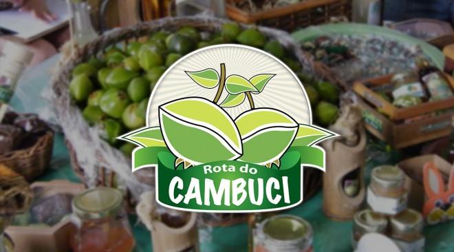 Festival do Cambuci em Parelheiros