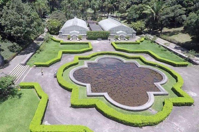 Jardim Botânico de São Paulo, vale uma visita!